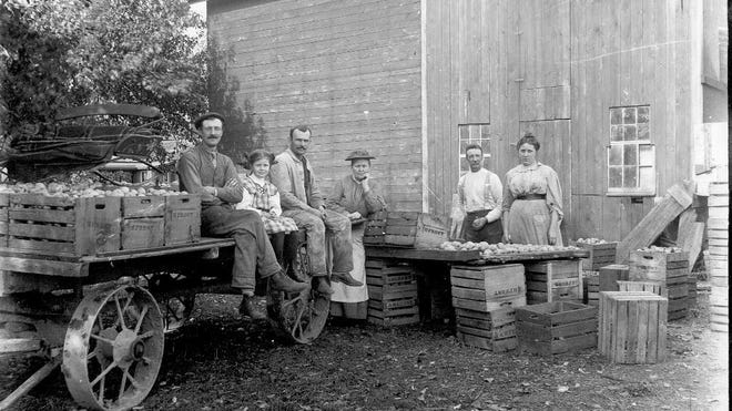 Apple growing was a successful venture in Penfield, and they were often preserved by drying. Seen in this circa 1908 photo taken by Arthur Frost is a group of people taken outside an apple dry house.