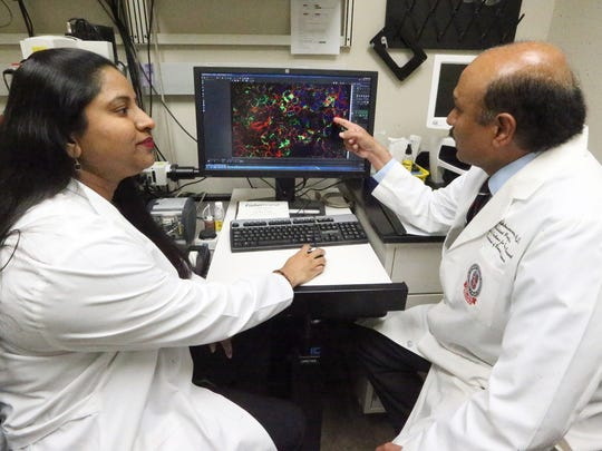 Rajkumar Lakshmanaswamy, right, dean of the graduate school of biomedical sciences at the Texas Tech University Health Sciences Center El Paso, looks at pancreatic cancer cells with Ramadevi Subramani, a senior research associate at the Paul L. Foster School of Medicine Friday.
