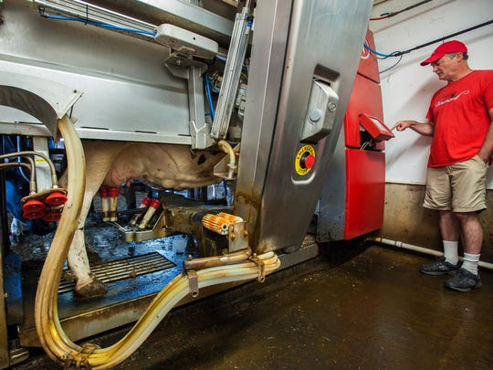 Clark Hinsdale III monitors a robotic milker at Nordic Farms in Charlotte on Tuesday, August 16, 2016.