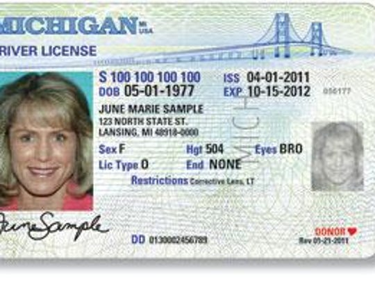 Michigan Secretary of State offices and online services