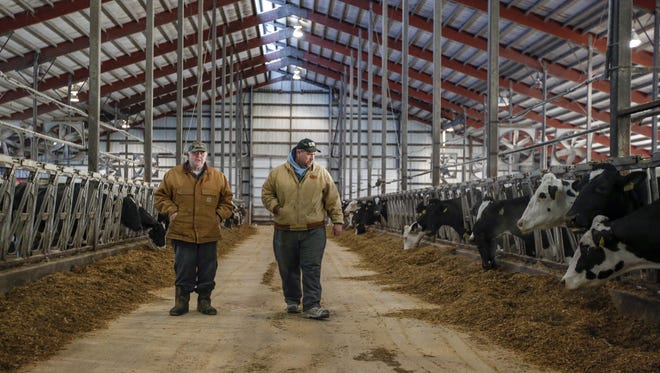 Richard Micke and his son Brian walk through one of their barns inspecting their cows in Reedsville Tuesday, Jan. 4.
