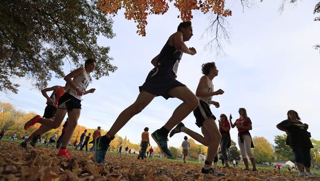 Runners compete in the Division 1 WIAA boys cross country sectional meet at Colburn Park on Friday, October 20, 2017 in Green Bay, Wis.
