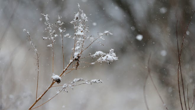 Snow clings to a small branch along the Manitowoc River as a snowstorm moves across northeastern Wisconsin  Tuesday, Apr. 3, 2018, in Manitowoc, Wis. Josh Clark/USA TODAY NETWORK-Wisconsin