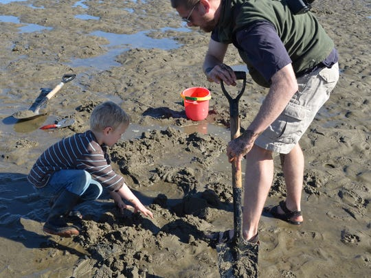Purple varnish clams on Siletz Bay are so easy that even an adult can do it, although having a kid helps.