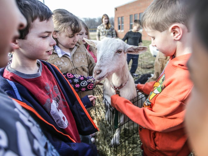 Friday March 21st, 2014, students Guage Stoneking (left), Ashley Webster ((center left), and Cole Penley (right) pet a goat from Four Square Farm. Students from Avon Maple Elementary, and White Oak Elementary Schools celebrated Ag Month with lessons in livestock, with Livestock Day.