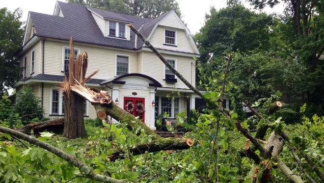 A tree fell during wind and rain Tuesday night in Somerdale.