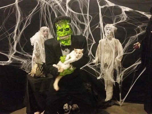 Halloween cat - store cat Jefferson -- uncropped - PSP