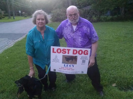 Lost dog Lucy found