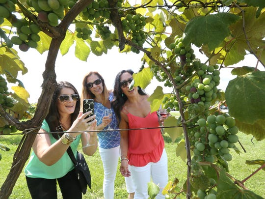 Adena Miller, left, Anne Miller, center, and Edie Catlin, right, take in the sights, including ripening grapes on the vines, as they tour Hunt Country Vineyards with owner Art Hunt in 2017.