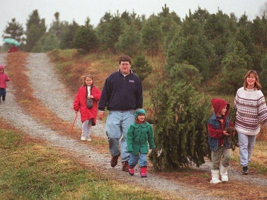 Text: xmasprep /metro/ 11-30-96; the orcutt family of anderson township carries their fresh cut christmas tree at the corsi christmas tree farm in brown county, ohio. they are from left, in the rear in pink, mckenna, 3, kylie, 10, doug, carrying tree, kate