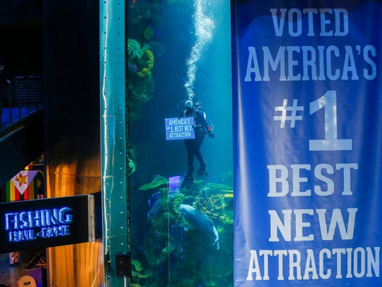 A diver holds a sign after it was announced that Wonders
