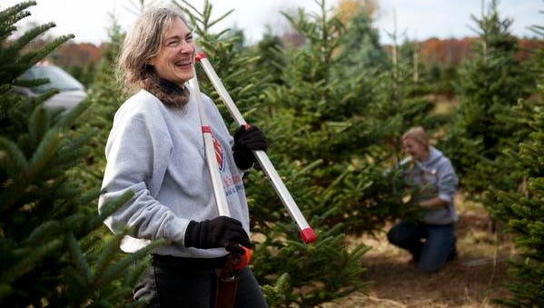 Jerrianne Scheiderich laughs as she talks with her employees on Saturday, Oct. 25, 2014. She drives three hours every weekend to help her mother keep their family tree farm going.