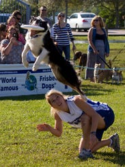 Bark in the Park includes a dog lure course; a demonstration