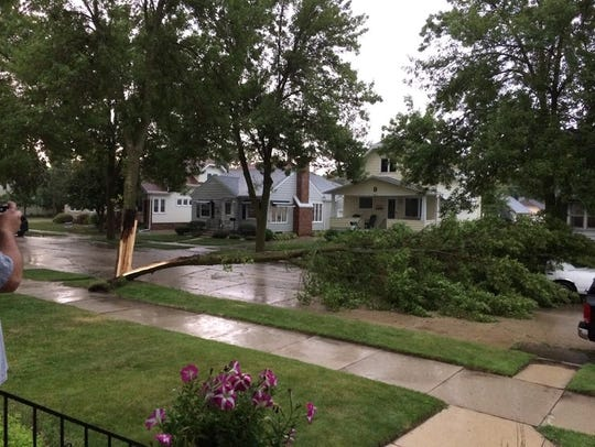 A tree downed by the storm Friday Aug. 14 fell onto