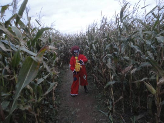 Wicked on Wiesman features a haunted corn maze.