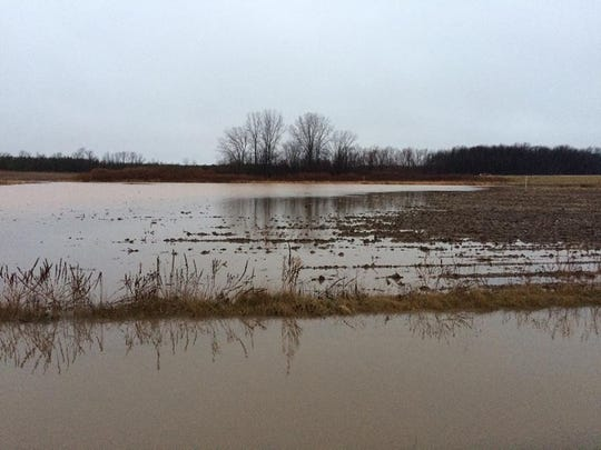 Standing water in a field along Misere Road and Wisconsin 57 in Southern Door.