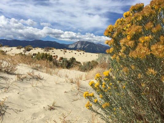 635956413035825237-washoe-lake-dunes.jpg