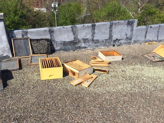 635968366656603811-bees-stolen.jpg