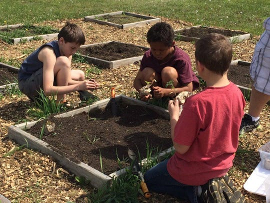 Clayton, Dylan and Isaiah planting vegetables