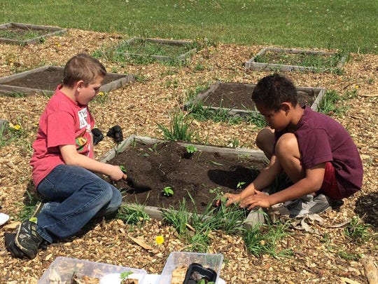 Isaiah and Dylan planting vegetables