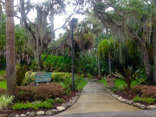 Florida Tech Botanical Gardens is a truly tropical trail