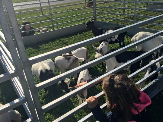 Jeff Baird provided a petting zoo for students at the KPREP event.