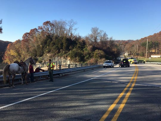 The Susquehanna Trail was closed for a period of time after the horse fell over a guardrail.
