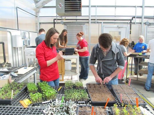 Newton agriculture students work in a greenhouse recently