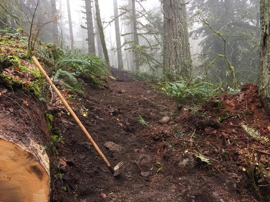 Old trails are being improved and new trails are being built by the Cascadia Trail Crew for mountain biking at Shellburg Falls Recreation Area east of Salem.