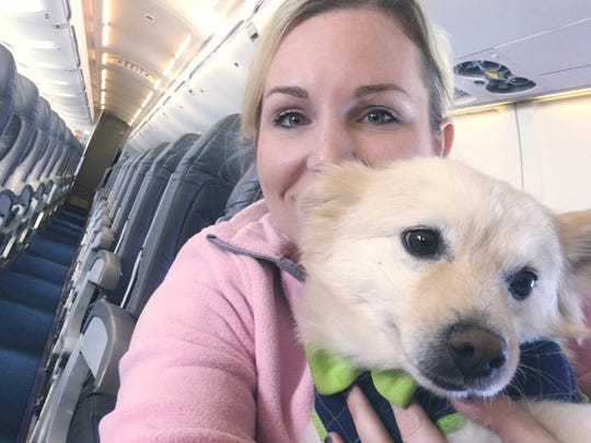 Madison Conradis, Melbourne, with her Yettee, a 5-year-old Pomeranian American Eskimo mix, Yettee, on a flight to Maine. The 28-year-old Conradis believes more and more younger people are buying pets than previous generations.