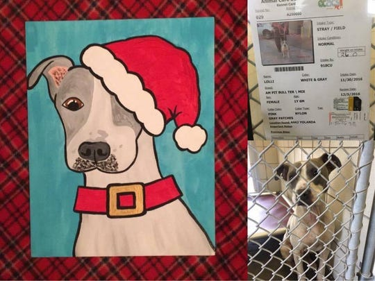 Lisa Montez painted portraits of dogs at Animal Care Services shelter in December 2016 in an effort to help get the dogs adopted.  Later that month the dogs were transferred to San Antonio in the wake of a water use ban in Corpus Christi. Some of them were adopted in San Antonio, while others remain in shelters around the state.