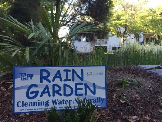 636319145488997501-New-TAPP-rain-garden-Courtney-Schoen.jpg