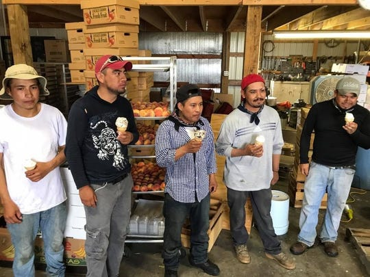 Paulus Orchards migrant workers enjoy Hershey's Ice Cream after picking fruit in 90-degree weather. Jana Benscoter/photo