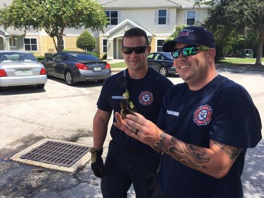 Titusville firefighters saved three baby ducks stuck