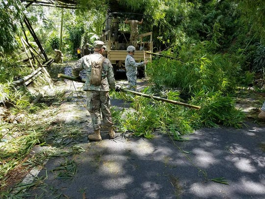 Members of the Puerto Rico National Guard's A Co. 1-296th Inf. Reg. do their best to clear roadways of fallen trees in the vicinity of Utuado, PR, on Sept. 9, 2017, in the wake of Hurricane Irma.