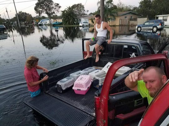 Animals rescued from flooded Cocoa home.