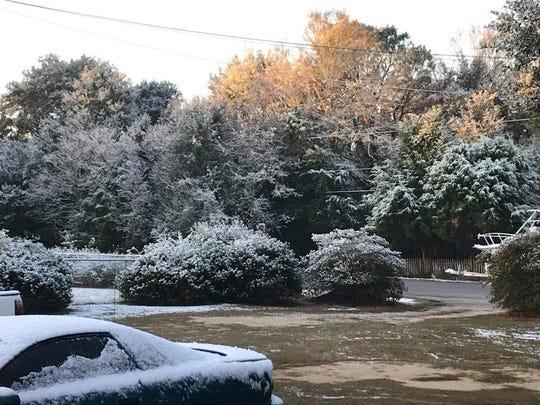 Snow in Molino in Escambia County, near the Florida/Alabama border, on Saturday, Dec. 9, 2017.