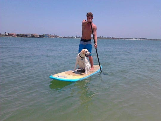 Michael Vacchiano navigates gulf waters by SUP with his dog, Jersey.