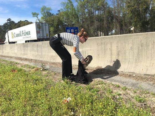 This injured owl was rescued from the side of I-10 by LCSO Detective Emily Shaw.