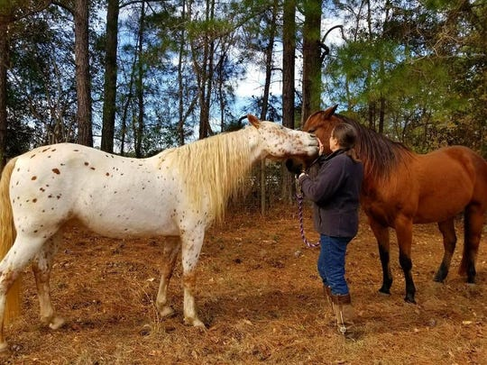 Corine Samwel with the two horses she uses for equine