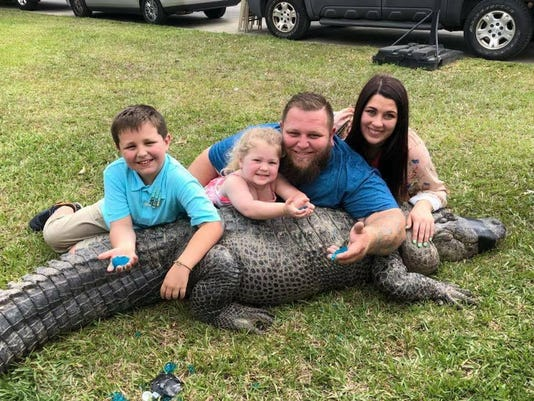 Louisiana man uses alligator in gender reveal