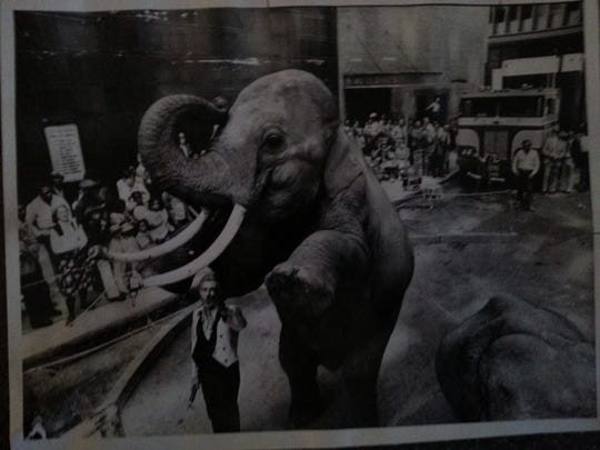"""This is a 1975 picture of Murray Hill and his male elephant Onyx, who was renamed """"Big Mac"""" once he was donated to the Dickerson Park Zoo. The photo was taken in downtown Chicago by Neil Cockerline."""