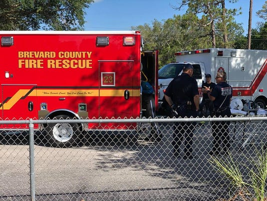 Man injured in fall from tree in Titusville