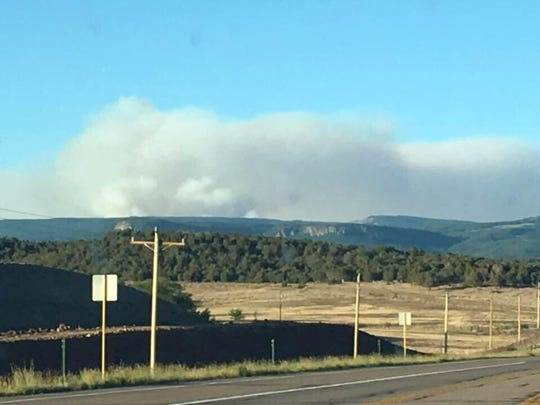 The Burro Fire has grown to 300 acres. This photo  was taken June 8 from mile marker 53 on Highway 160 by a U.S. Forest Service employee.