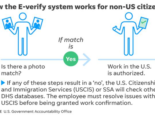 E-verify process