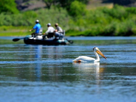 -07022015_missouri river fishing-c.jpg_20150703.jpg