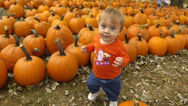 Take the kids to a pumpkin patch this month.