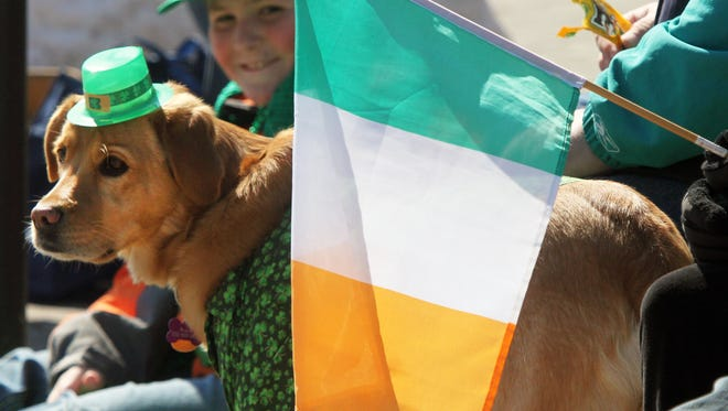 Central Jersey St. Patrick's Day parades are good for the whole family, and even the pets.