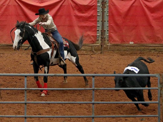 Jessica Downey chases down a calf during the beginner ranch hand competition Saturday at the J.S. Bridwell Agricultural Center. The Ranch Sorting National Championship event was part of the 2016 Wichita Extension Horse Committee's Horse Expo.