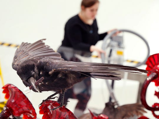 A taxidermic crow sits atop Javier Pérez' 2011 piece,